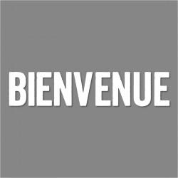 VINYLE FACADE 'BIENVENUE'