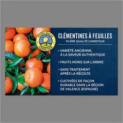PANNEAU-FQC-CLEMENTINES